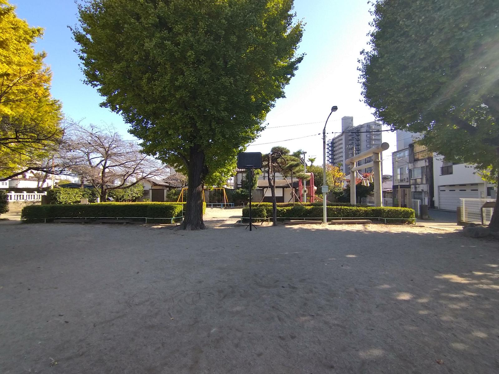 Photo_20210126120401